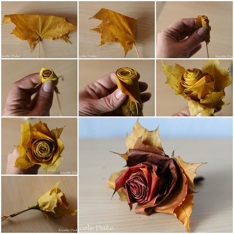 DIY-Beautiful-Maple-Leaf-Rose tutorial