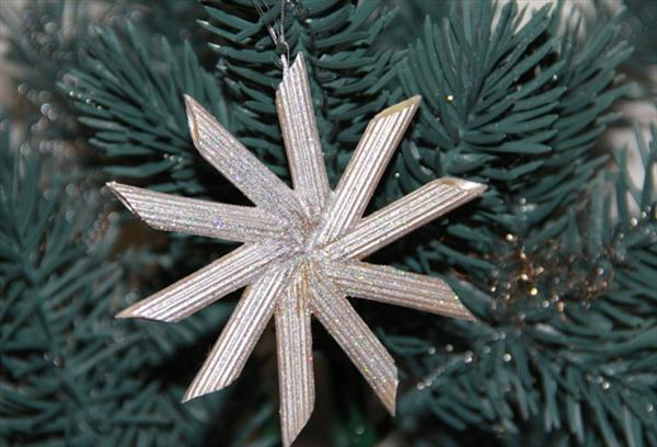 DIY-Pasta-Snowflake-Ornaments-17