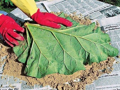 DIY-Sand-Cast-Birdbath-in-Leaf-Shape04