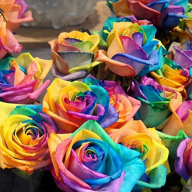 DIY rainbow rose tutorial 2