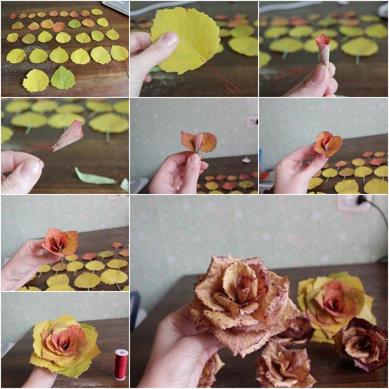 How-to-DIY-Beautiful-Roses-from-Autumn-Leaves tutorial