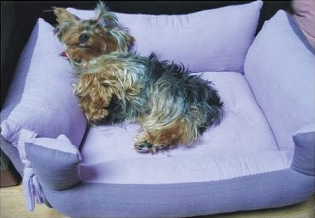 DIY-Couch-Pet-Bed-1