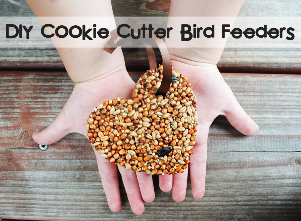 Things-You-Never-Thought-to-Do-With-Christmas-Cookie-Cutters-DIY-Cookie-Cutter-Bird-Feeders