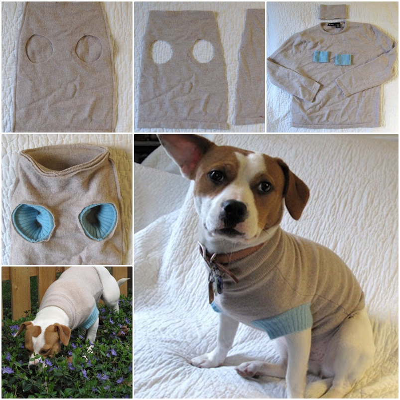 DIY-Dog-Sweater-from-Old-Sweater