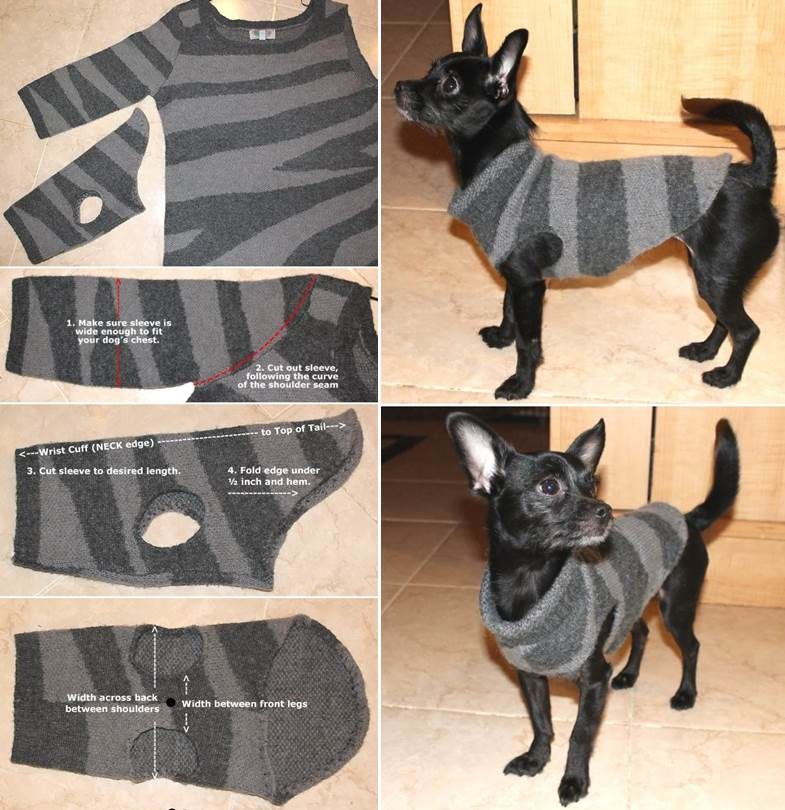 DIY Dog Sweater from Old Sweater
