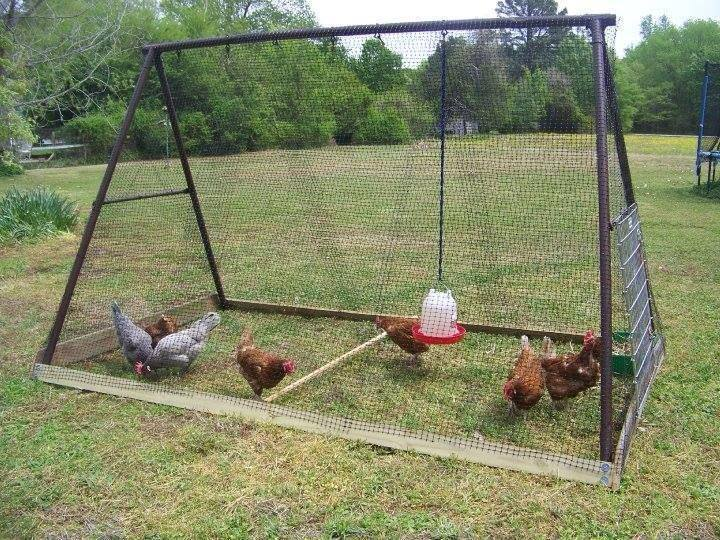 DIY Backyard Chicken Coop Plans And Tutorials
