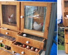 10+ Backyard DIY Chicken Coop Plans and Tutorials