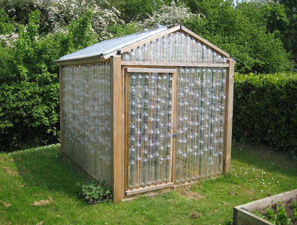 DIY plastic bottle green house 3