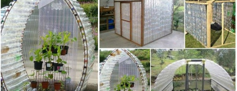 DIY Plastic Bottle Green House