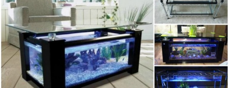 How to diy aquarium coffee table for How to build an outdoor aquarium