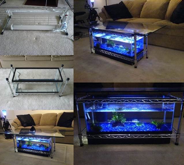 DIY Aquarium Coffee Table