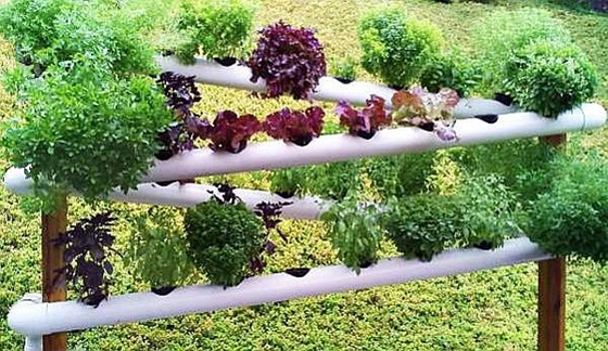 Diy Pvc Gardening Ideas And Projects Beesdiy Com