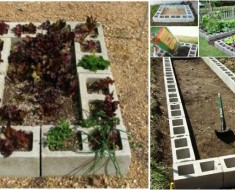 DIY Raised Garden Bed with Cinder Block