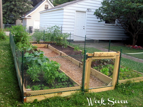 How To Build U Shaped Raised Diy Garden Bed