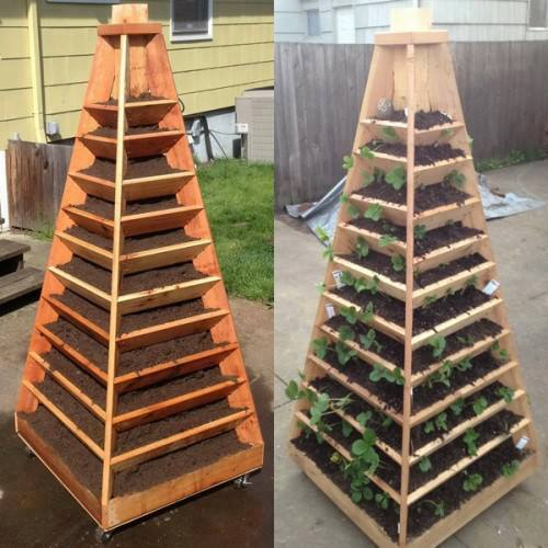 DIY Vertical Garden Pyramid Planter3