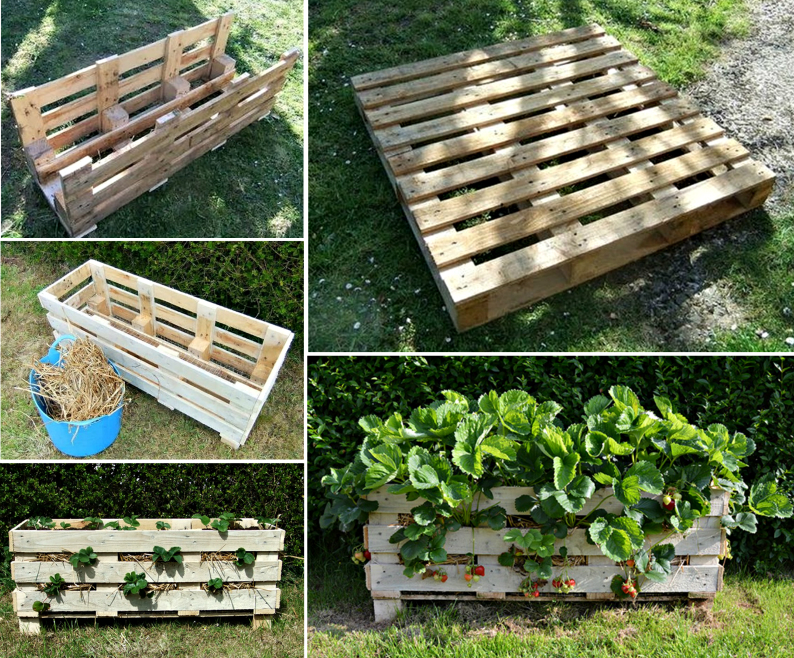 Top 15 Low-Budget DIY Garden Planters 13.1