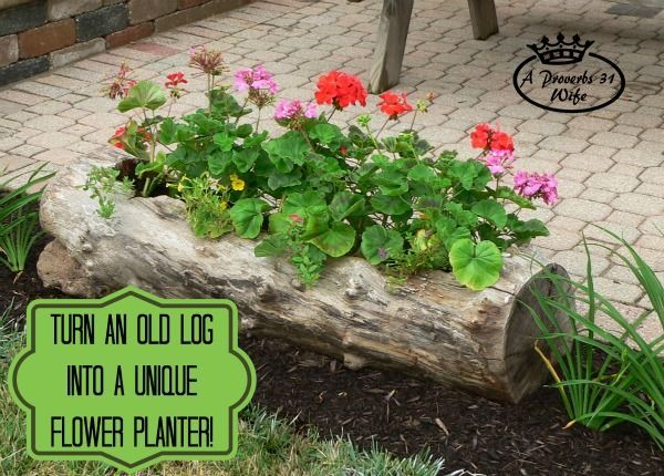 Top 15 Low-Budget DIY Garden Planters 7.1