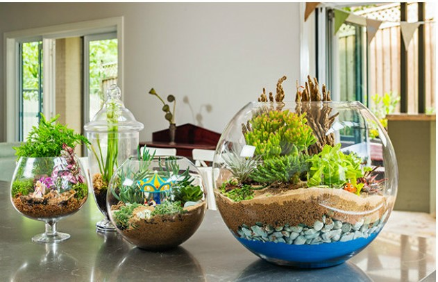 DIY Sand Art Terrarium Tutorial2 - DIY Sand Art Terrarium Tutorial