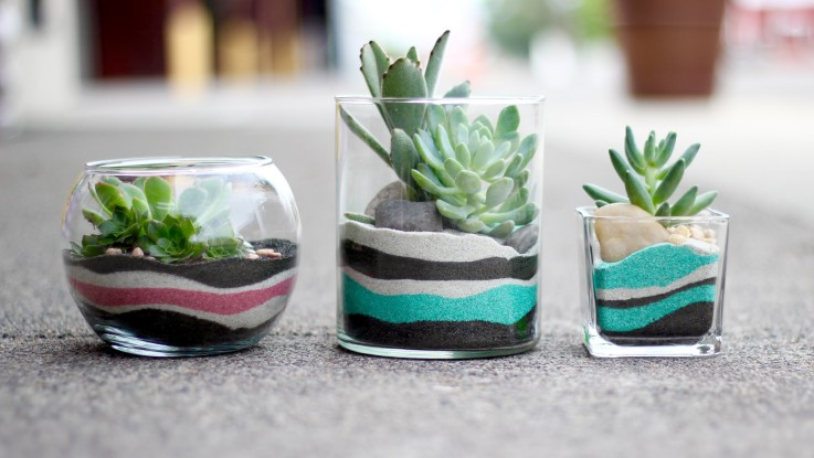 Diy Sand Art Terrarium Tutorial