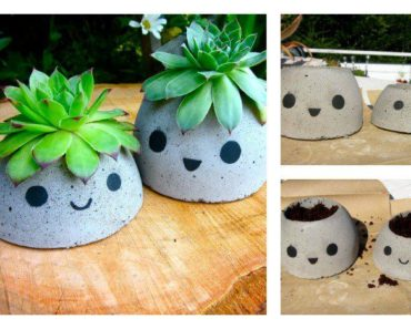 Cute DIY Concrete Planter